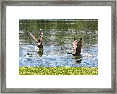 Geese Going This Way And That Framed Print