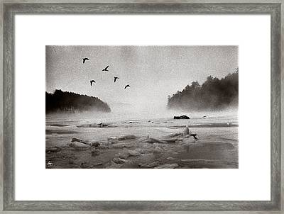 Geese Over Great Bay Framed Print