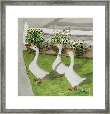 Geese Police Framed Print by Bonnie Young