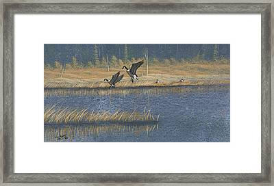 Framed Print featuring the painting Geese by Richard Faulkner