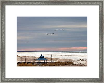 Geese Will Travel Framed Print