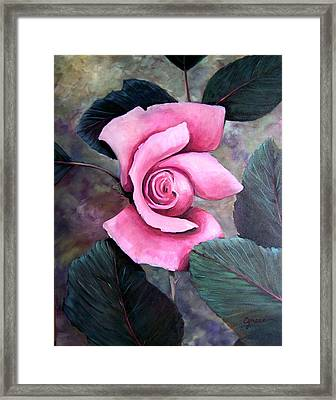 Generational Rose Framed Print