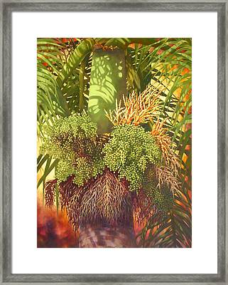 Generations Palm Framed Print by Monica Linville
