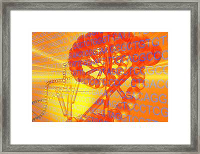 Genetic Research Framed Print by Carol and Mike Werner