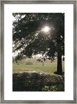 Framed Print featuring the photograph Gentle Breeze  by Christie Minalga
