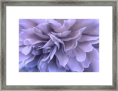 Framed Print featuring the photograph Gentle Breeze by Darlene Kwiatkowski
