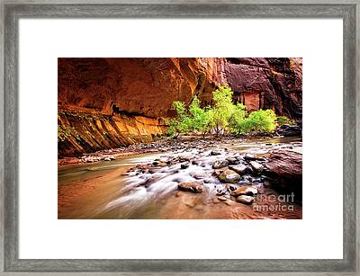 Gentle Flow Framed Print