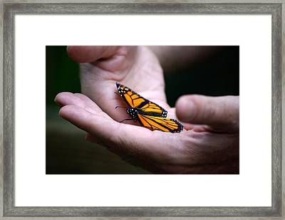 Gentle Friend Framed Print