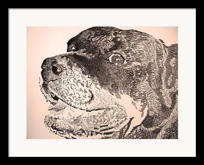 Robbi Musser Art Framed Prints