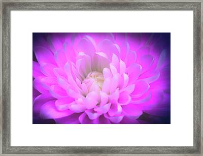 Gentle Heart Framed Print