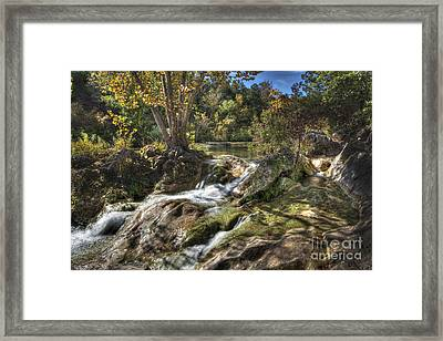 Framed Print featuring the photograph Gentle Mountain Stream by Tamyra Ayles