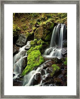 Gentle Summit Creek Framed Print