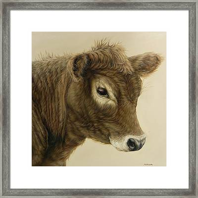 Gentle Swiss Calf Framed Print