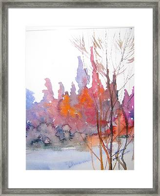 Gentle Woods Framed Print
