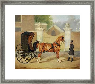 Gentlemen's Carriages - A Cabriolet Framed Print by Charles Hancock