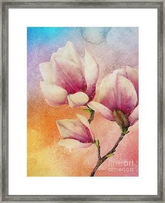 Gentleness Framed Print