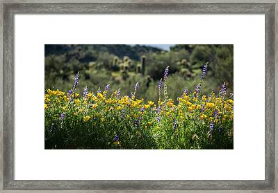 Framed Print featuring the photograph Gently Swaying In The Wind  by Saija Lehtonen