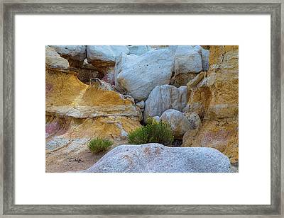 Geological Texture Layers And Yellow Flowers Framed Print