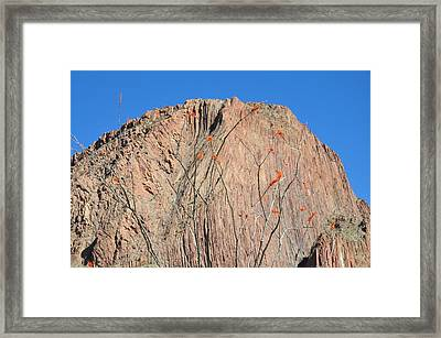 Geology Sans Cantus  Framed Print by Thor Sigstedt