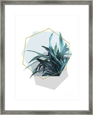Geometric Jungle Framed Print