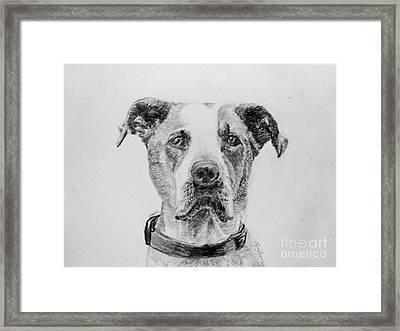 George Framed Print by Lyric Lucas