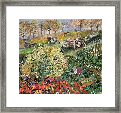 George's Allotment Framed Print by Lisa Graa Jensen