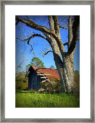 Georgia Barn Framed Print by Carla Parris