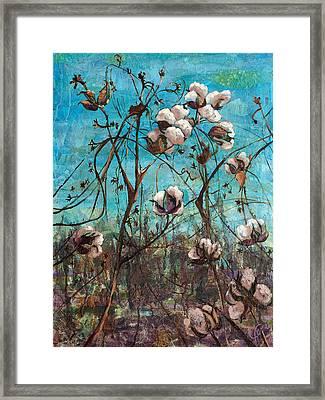 Georgia Cotton Framed Print by Jami Childers