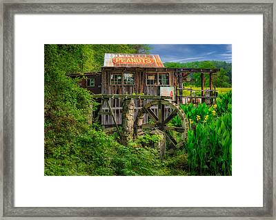 Georgia Roadside Peanut Stand - 1 Framed Print by Frank J Benz