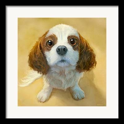 Dogs Portrait Framed Prints