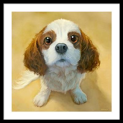 Dog Portrait Framed Prints