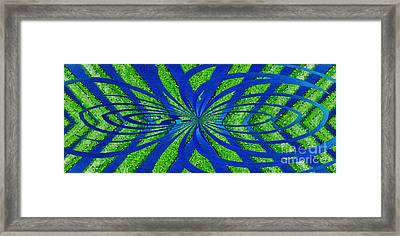 Geotwist Nature Abstract By Kaye Menner Framed Print