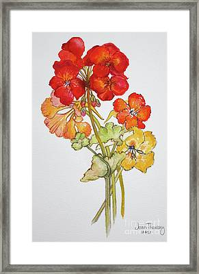 Geranium And Nasturtiums Framed Print by Joan Thewsey