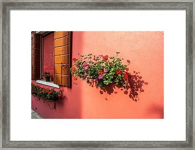 Geranium And Window Framed Print by Peter Tellone
