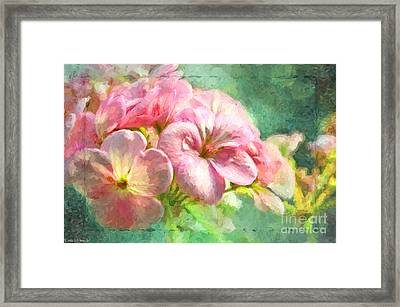 Geranium - Digital Paint Framed Print by Debbie Portwood
