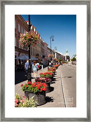 Geranium Flowers Growing Along Street Framed Print