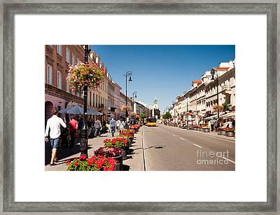 Geranium Flowers Planted Along Street Framed Print