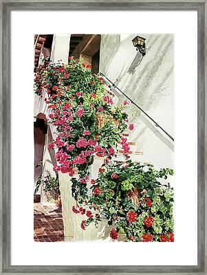 Geranium Staircase  Framed Print