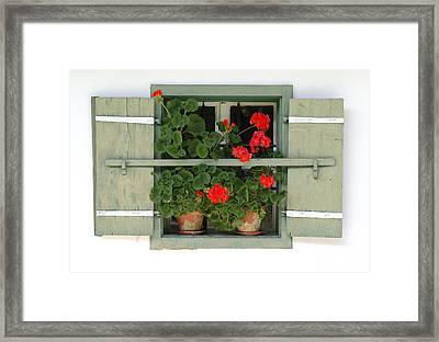 Geranium Window Framed Print by Frank Tschakert