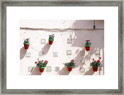 Geraniums Ganging Up Framed Print by Jez C Self