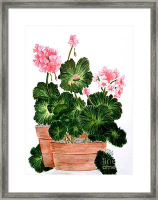 Framed Print featuring the painting Geraniums In Clay Pots by Terri Mills