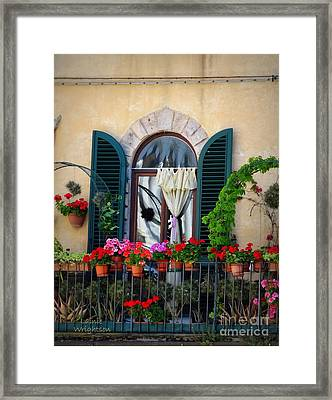 Geraniums On A Tuscan Terrace Framed Print