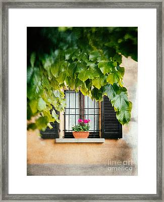 Framed Print featuring the photograph Geraniums On Windowsill by Silvia Ganora