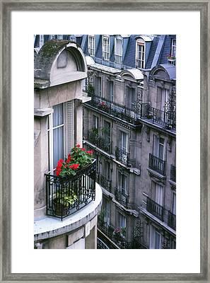 Geraniums - Paris Framed Print