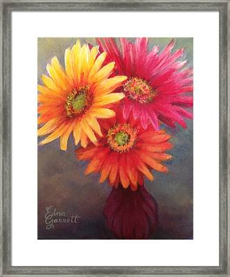 Gerbera Daisies In Purple Vase Framed Print