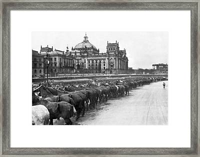 German Horse Inspection Framed Print by Underwood Archives