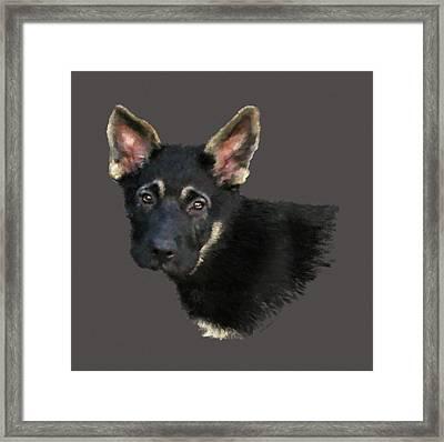 German Shepard Puppy Framed Print by Kathie Miller