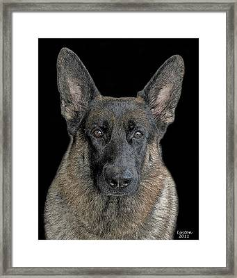 German Shepherd Dog 3 Framed Print by Larry Linton