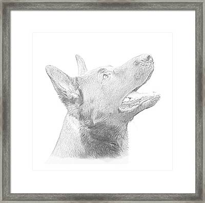 German Shepherd Profile Framed Print by Christean Ramage