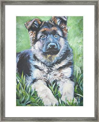 German Shepherd Puppy Framed Print
